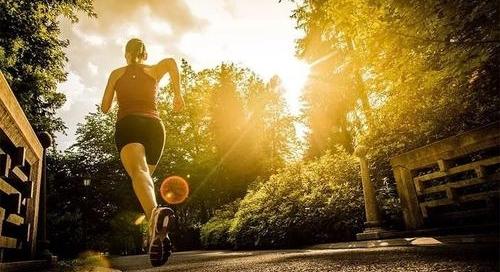 【健康生活】轻养健康人生-副业之路